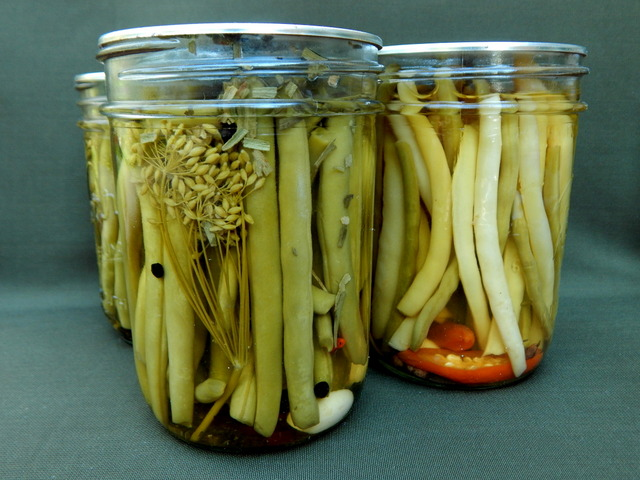 If this is your first attempt at water bath canning, I highly recommend pickled snap beans: It's hard to mess them up. Learn to make Definitely Dilly Beans and Asian-Style Pickled Beans.