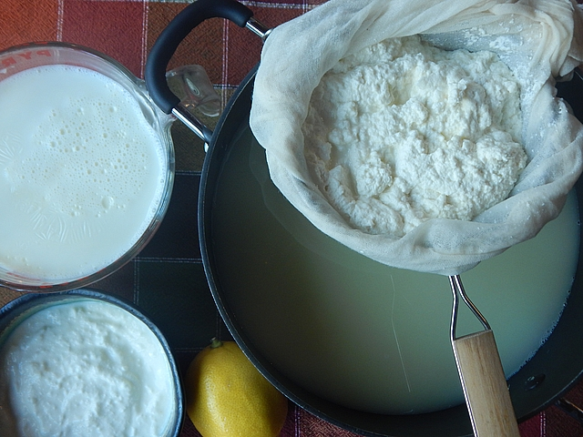 A Greek yogurt fixation and success with homemade mozzarella started me down the road of making—and teaching you to make—a range of fresh, soft cheeses. Read more about homemade cheese and yogurt.