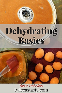Dried foods pack intense flavor into every bite. You don't have to use precious freezer space, and you don't need to mess with filling and processing jars. Learn more dehydrating basics.
