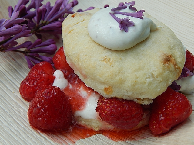 For today's party, it was hard to resist easily created desserts that show off freshly harvested botanicals and summer fruits. Learn to make Strawberry Shortcake with Lilac Cream and Rhubarb Crisp.