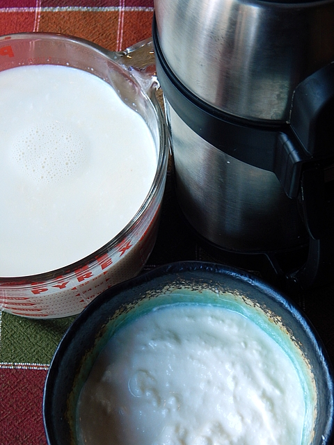 Making new styles of cheese has taught me a few tricks that apply to my homemade standards. Learn about making better yogurt and cheese at TwiceasTasty.com.
