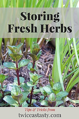 Food has always dominated my travels, and home re-creations almost always start with herbs. Read more about choosing and storing herbs.