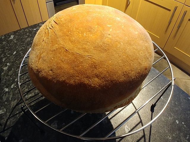 Drying sourdough starter lets you save some starter if don't plan on baking for several months. Get sourdough recipes at TwiceasTasty.com.