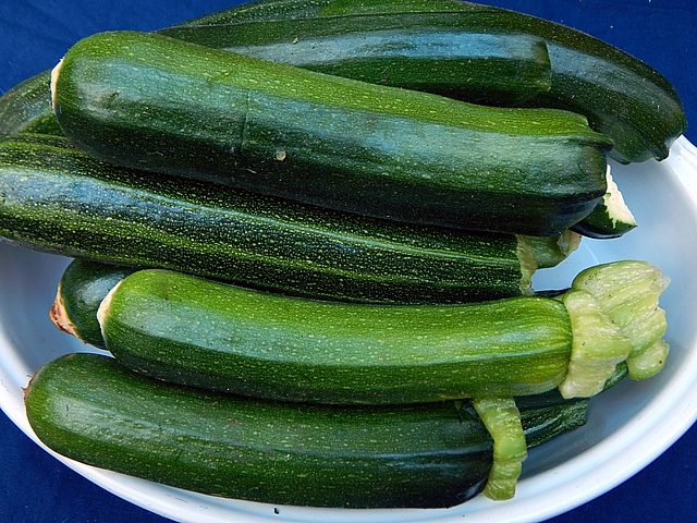 My mom tried every way she could think of to feed us zucchini. I still rely on her classic and newer recipes. Get zucchini recipes at TwiceasTasty.com.