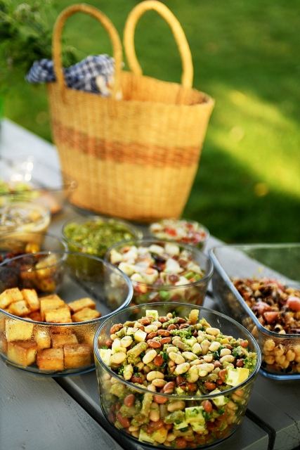The Pickled Picnic by Julie Laing.