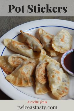 Tasty pot stickers can be hard to find but make a fun project at home. Get dumpling recipes at TwiceasTasty.com.